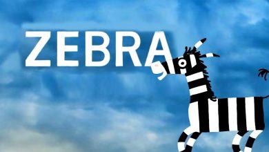 تصویر از نقد و بررسى انيميشن كوتاه زبرا zebra