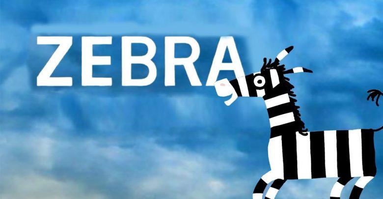 نقد و بررسى انيميشن كوتاه زبرا zebra